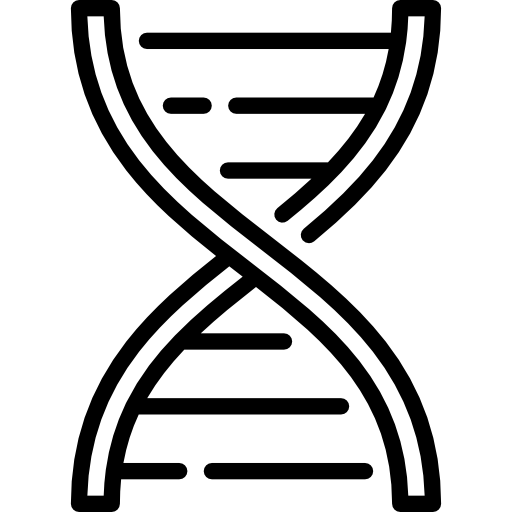 dna-structure