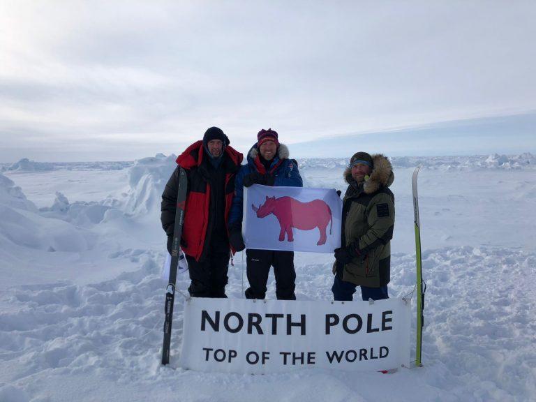 Pink rhino flag