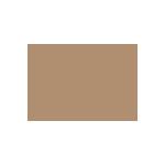 17_AFL_FIN_ART_Branding_logo_v1